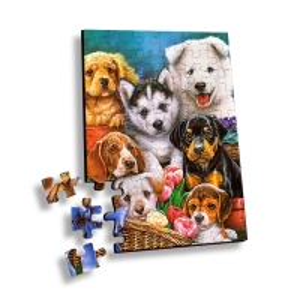 Best 100 Piece Plastic 3D Lenticular Printing Puzzle For Souvenir wholesale