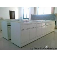 High Standard Wall Mounted Bench With Lab Sinks And Faucets  For Laboratory Furniture