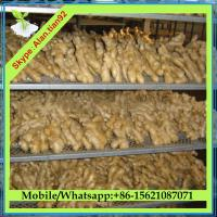 Buy cheap Dry Ginger, Air Dried Ginger Price from wholesalers