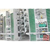 Quality Egg Collection Equipment wholesale