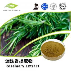Best Hot Sale Rosemary Leaf Extract Carnosic Acid 5%~80% HPLC Testing wholesale