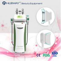 China Wholsale High Quality Cryolipolysis Fat Freeze Cryolipolysis Slimming Machine on sale