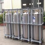 Best 175L Cryogenic Liquid xygen/Nitrogen/Argon Cryogenic Cylinder Dewar Bottle TL175L wholesale