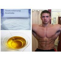 USP Test Acetate / Testosterone Acetate Anabolic Steroid Body Supplements