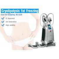 Best Fat Freeze Cryolipolysis Treatment For Body Slimming wholesale
