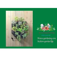Best Indoor Hanging Flower Baskets , Versatile Wall Hanging Baskets wholesale