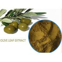 Best Organic Olive Leaf Extract For High Blood Pressure ,  Pure Olive Leaf Extract Super Strength wholesale