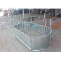 Buy cheap Australia standard galvanized cattle panel fence Cattle Crush,Cattle Chute from wholesalers