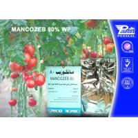 Best Mancozeb 80% Wp Systemic Fungicides Cas 8018-01-7 Fungicide Products wholesale