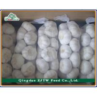 Buy cheap Chinese Frozen Garlic Price from wholesalers