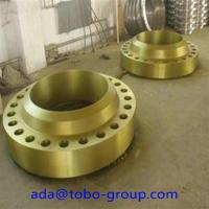 Best ASTM A182 F22 Alloy Steel Forged Steel Welding Neck Flange Standard / Non - standard wholesale