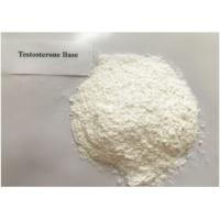Quality Safest Testosterone Steroid Testosterone Base Powder / Test No Ester 58-22-0 wholesale