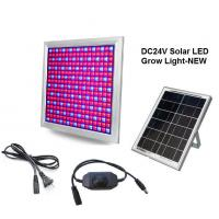 Cheap DC24V Solar LED Grow Light 58W Dimming Red+Blue Full spectrum for Vegetable and for sale