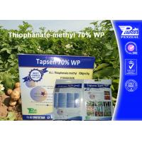 Best Off - White Powder Systemic Fungicides Thiophanate - Methyl 70% WP wholesale