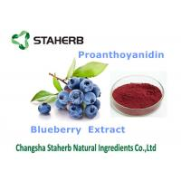 China Blueberry Extract Antioxidant Dietary Supplement Enhance Immune System Ability on sale