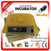 Best Newest EW-48A automatic high quality chicken incubator / mini quail egg incubator high hatching rate wholesale