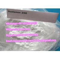Best Testosterone Blend Recipe Sustanon 250 Raw Steroid Powder Testosterone Sustanon 250 powder usage in steroids cycle wholesale