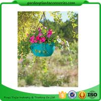 Best Colorful ABS Plastic Hanging Pots Includes Hanging Chain With Hook wholesale