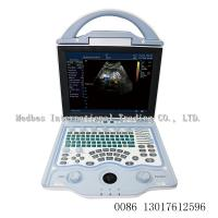 Best 2 ultrasonic transducer Portable3D Color doppler ltrasound Scanner  portable ultrasound machine for pregnancy wholesale