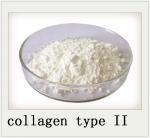 Best 9007 34 5 Joint Health Powder Chicken Sternum Cartilage Collagen Type II wholesale