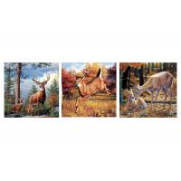 Best Custom 16x16 Inches 3d Lenticular Photo Flowers & Animals Mounted Wall Art Print wholesale