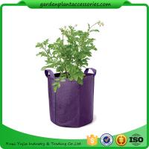 Best Hanging Grow Bags Garden Plant Accessories , Garden Grow Bags For Plants wholesale