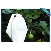 Best Nonwoven Agiculture Plant Grow Bags For Fruit Growth and Protection , Potato Grow Bags wholesale