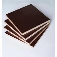 Buy cheap Film Faced Poplar Plywood For Construction, High strength and reusded times from wholesalers