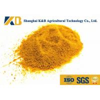 Best Corn Material Chicken Feed Protein 200g Free Sample Low Moisture Can Keep Fresh wholesale