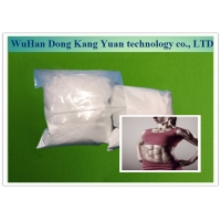 Best Androgenic Steroid Testosterone Undecanoate Powder 5949-44-0 For Increase Strength wholesale