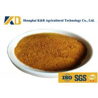 Best CGM Granules Corn Gluten Feed For Rich Amino Acid Vitamin And Mineral Matters wholesale