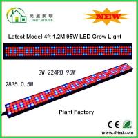 Cheap 1200mm Hydroponic Led Grow Light 1200mm For Greenhouse , Energy Saving for sale