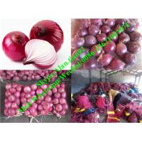Best Hot Sell Chinese Fresh Red Onion (3-5cm,10kg/Mesh bag Package) wholesale