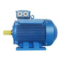 High Voltage 3 Phase Induction Motor / Squirrel Cage Induction Motor