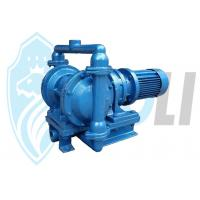 Best Light Weight Electric Double Diaphragm Pump Horizontal With Reduction Gears wholesale