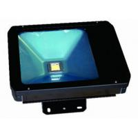 Best 70W Waterproof IP65 LED Flood light/LED Garden light wholesale