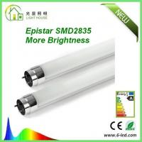 Best Cold White 6000-6500K 2 feet T8 LED Tube with very strong lumen SMD2835 wholesale