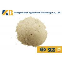 Best Dried White Rice Protein Powder Nutrition / Natural Feed Additives Long Expiry Date wholesale