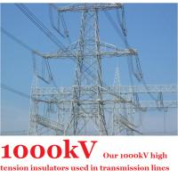 Quality 1000kV High Tension Insulators , Anti - Pollution Grey High Voltage Insulator wholesale