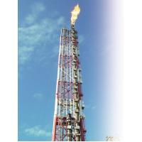 Best Combination Ground Elevated Flare System With Site Supervision Low Pressure Flare System wholesale