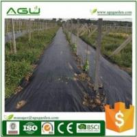 Best Stop weed grow weed control lawn barrier Roll length 50m black -green wholesale