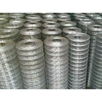 Best 1x1 Galvanized Welded Wire Fence Panels With Square Hole For Breeding Industry wholesale