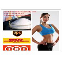 Best Natural Extract Synephrine Oxedrine Weight Loss Powders Fat Cutting Steroids wholesale