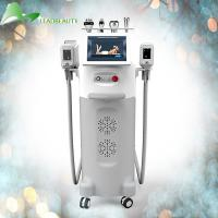 Best The best results rf beauty equipment cryolipolysis cryotherapy fat freeze machine wholesale
