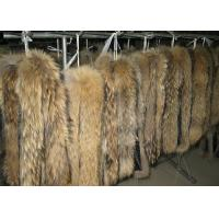 Best Raccoon fur collar tanned raccoon dog real fur skin long hair Chinese Raccoon fur wholesale