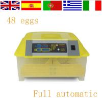 Best Best quality mini egg incubator for sale HT-48 wholesale