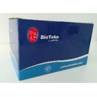Best Blood DNA Extraction Kit Midi Kit For Rapid Preparation Of Genomic DNA wholesale