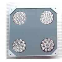 Best Outdoor explosion-proof LED Flood light for petrol station wholesale