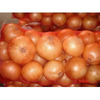 Best High Quality No Broken Skin No Scar New Crop  Yellow farm fresh onions wholesale
