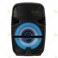 Best Wireless connection speaker/Battery speaker/Plastic speaker /8 inch speaker wholesale